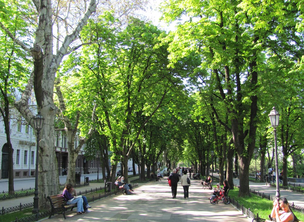 The Primorsky Boulevard - Photo 3